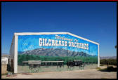 Gilcrease Orchards, pick your own fruits & vegetables,and cider in Centennial Hills